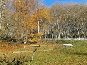 parque natural de aralar 2